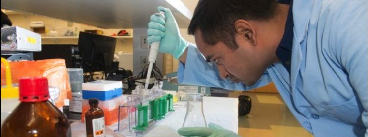 A photo of a graduate student working in a lab
